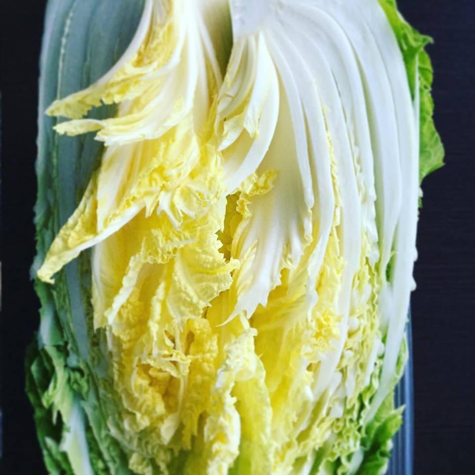 食卓に「漬物」のある暮らしを!新しいスタイルの漬物瓶【Picklestone】